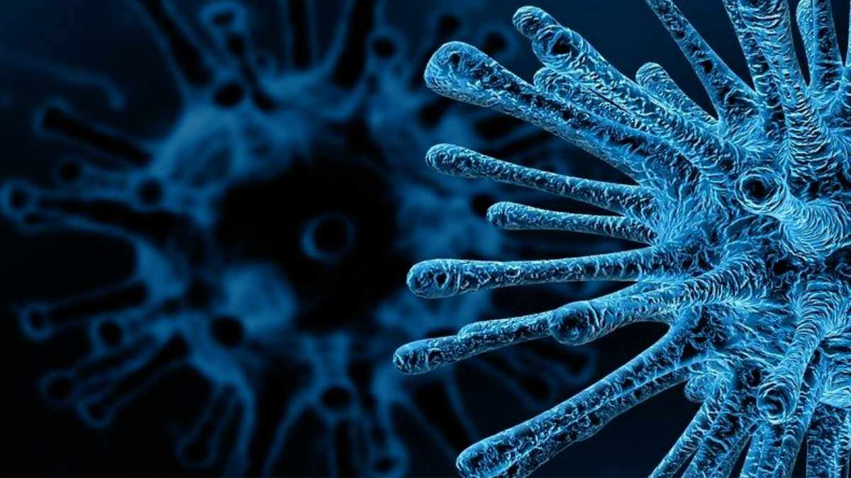 Neues Seminar Infektionsschutz und Hygiene von IBIT und Karafiat